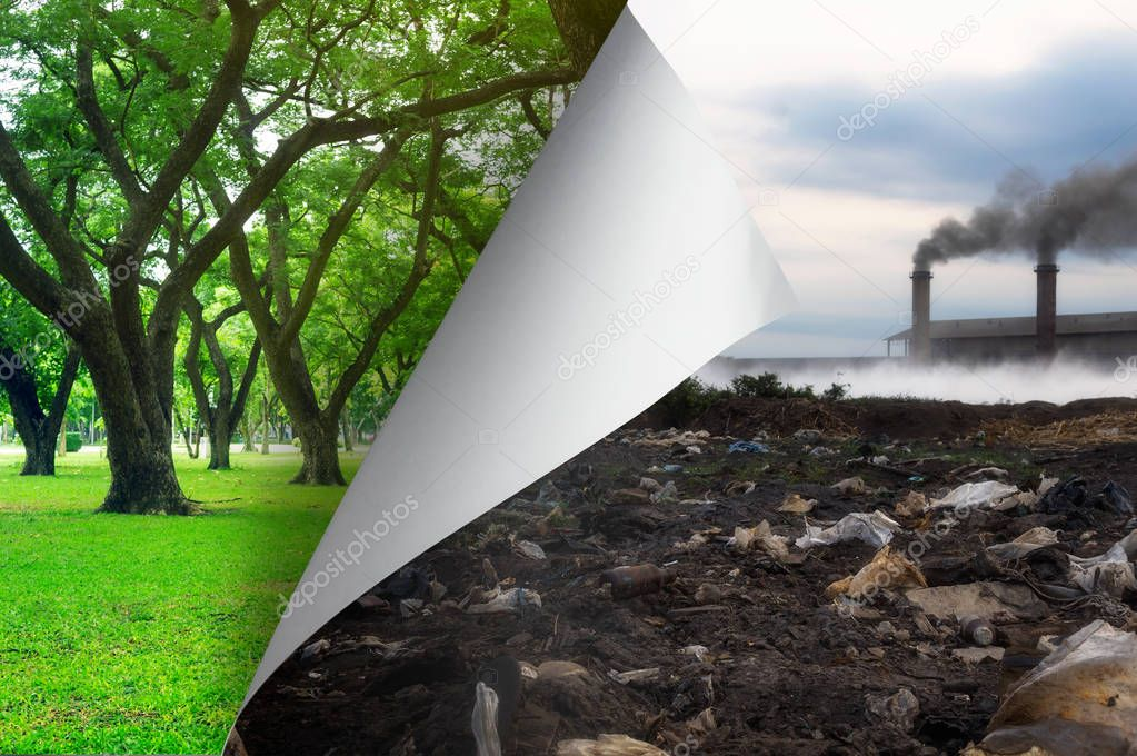 Change concept, Turning pollution page to Tree garden environmentally friendly, changing reality, hope inspiration,environmental protection, change weather, environmental campaign.