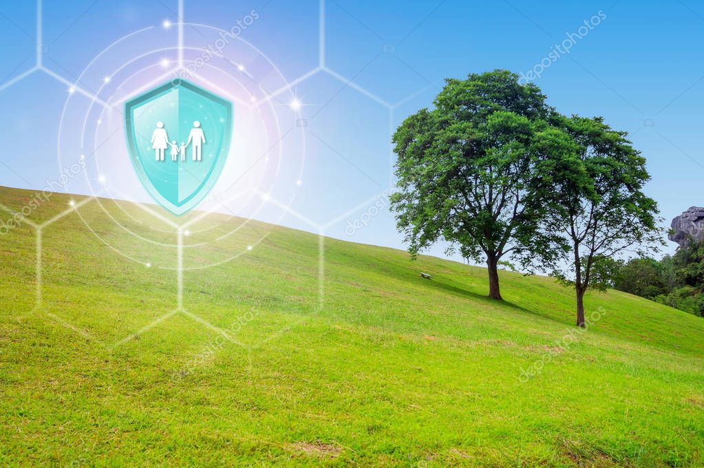 Life insurance, Shield protection family on virtual screen against Double Tree on the Hill on backdrop, Concept of insurance, Online insurance digital technology.