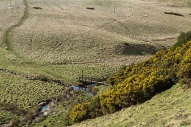 Landscape of the valley with river and footbridge around Lauder in  Lammermuir Hills, Scottish Border, Scotland. Uk