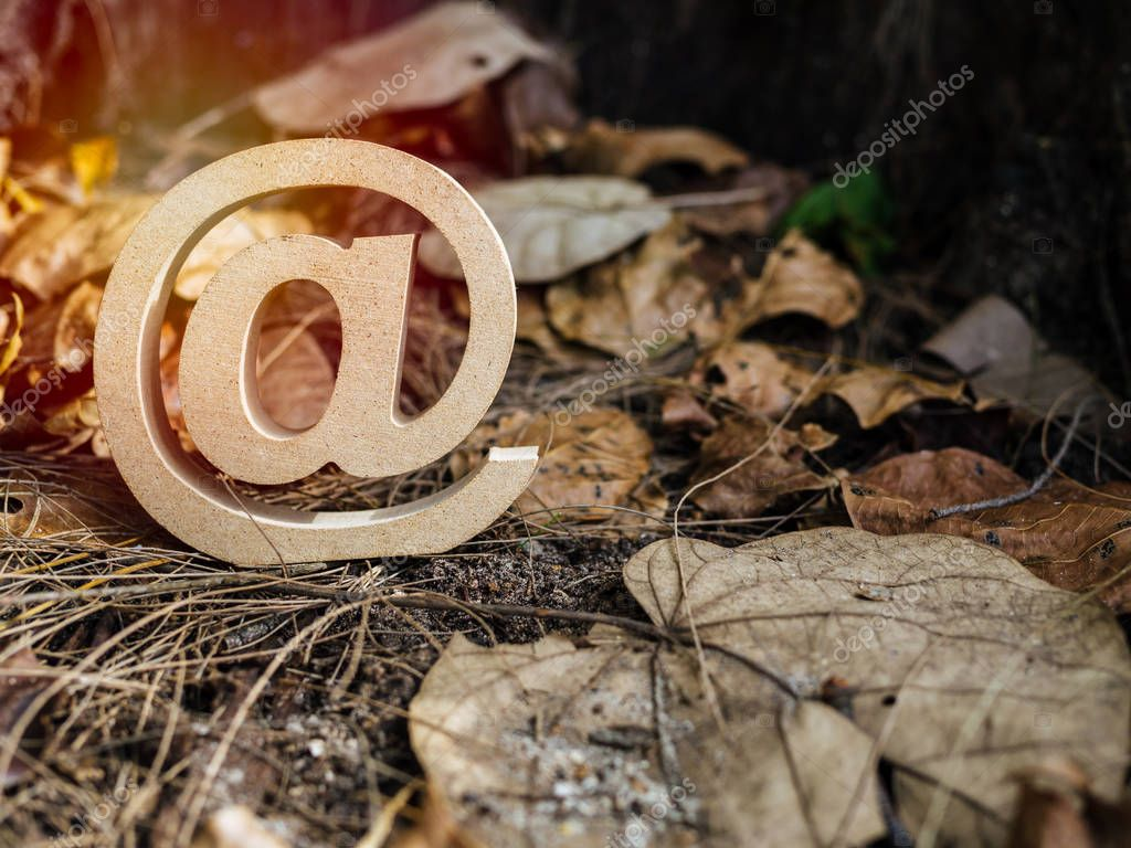 Wooden E-mail address symbol, arroba icon on dry leaves background with sunlight. E-mail marketing online internet, technology and environment concept.
