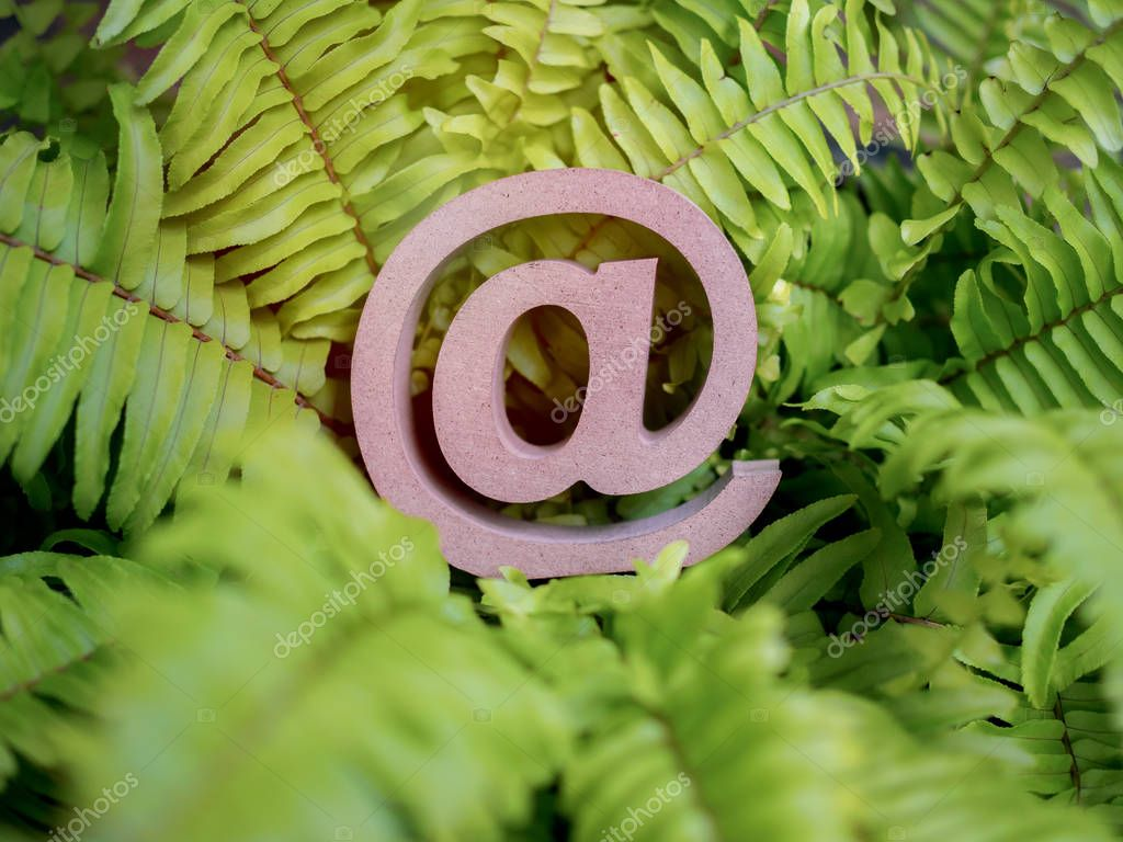 Wooden E-mail address symbol on green fern leaf, arroba icon on green leaves background with copy space. E-mail marketing online internet, technology and environment concept.