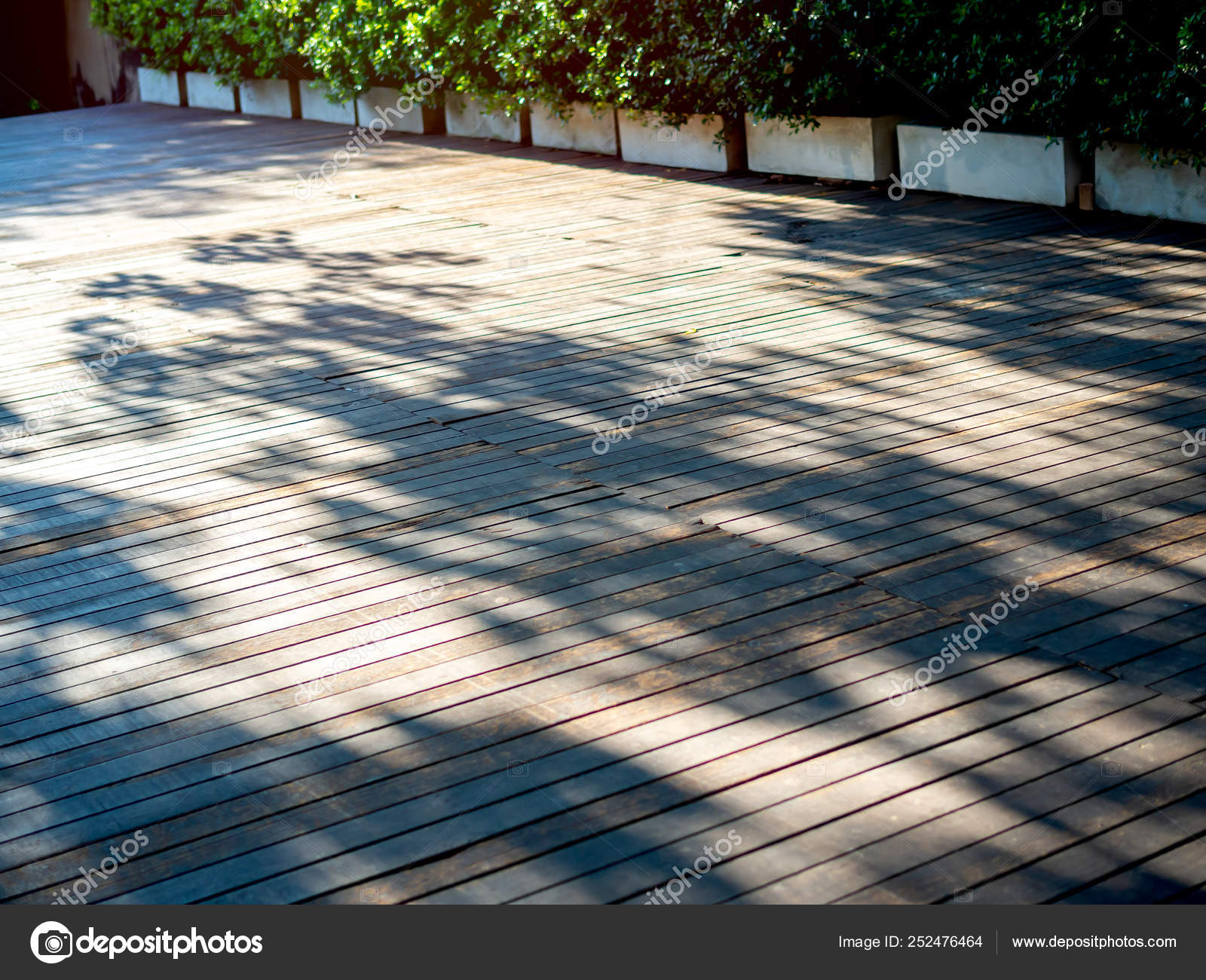 Terraza Exterior De Piso De Madera Con Sol Y Sombra De árbol