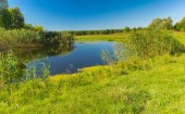 Pictorial summer landscape with small river Merla, Poltavskaya oblast,  Ukraine