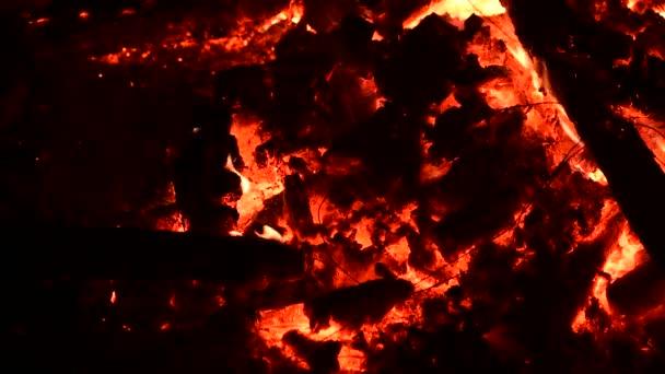 Pěkná palouk, oheň zavřít 4k video