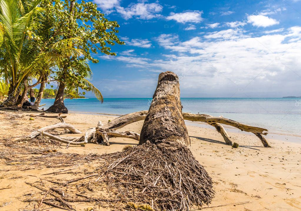 Starfish Beach panama.