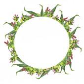 Nyári zöld növények és virágok garland elszigetelt fehér background. Kézzel rajzolt akvarell illusztráció