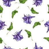 Fialový květ a list prvky izolované na bílém pozadí. Ručně tažené akvarel ilustrace