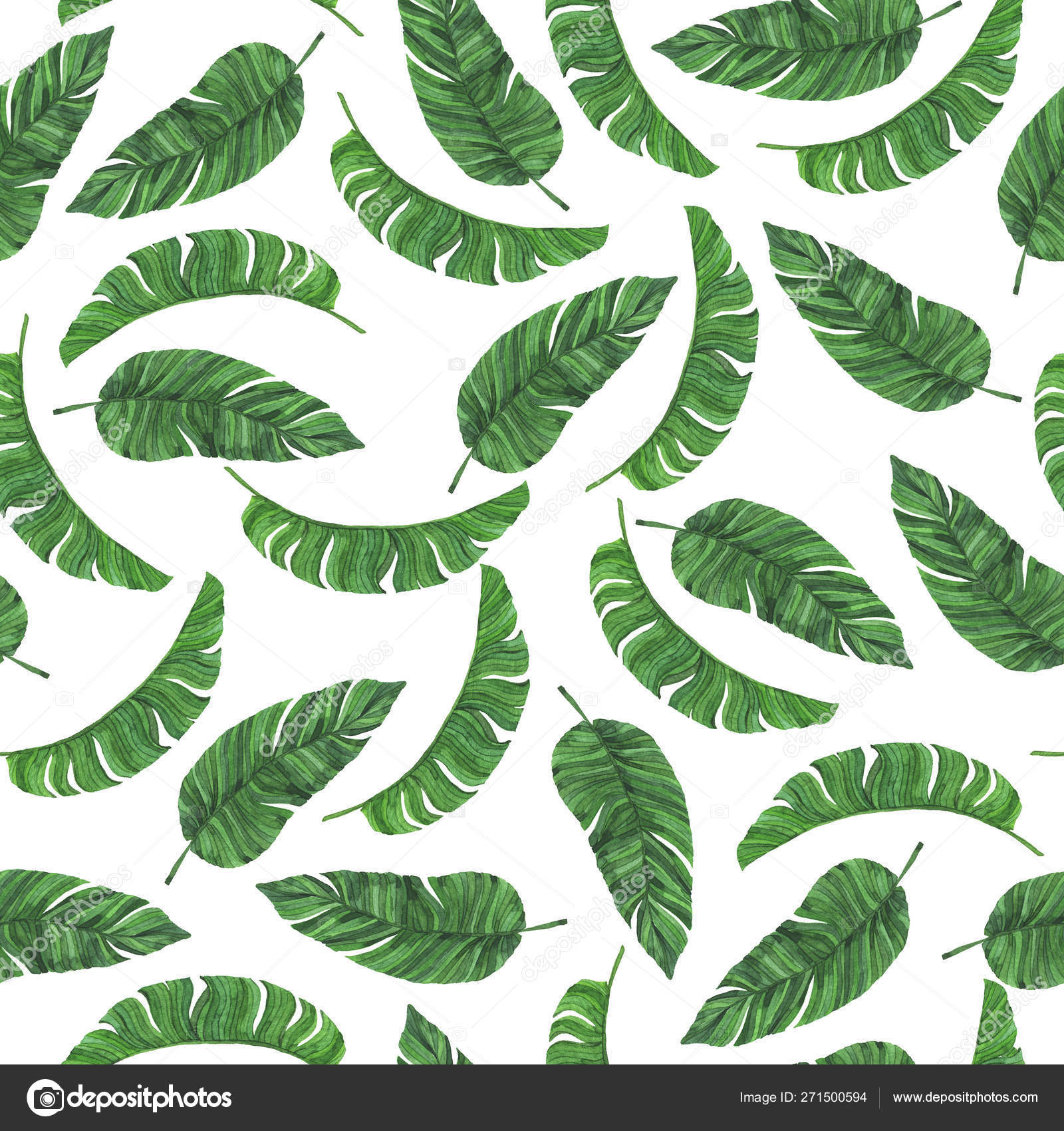 Áˆ Tropical Leaves Wallpaper Stock Photography Royalty Free Tropical Leaves Photos Download On Depositphotos Find high quality tropical leaves clipart, all png clipart images with transparent backgroud can be download for free! ᐈ tropical leaves wallpaper stock photography royalty free tropical leaves photos download on depositphotos