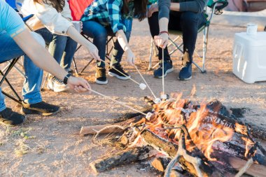 Low section of men and women roasting marshmallows on burning firewood