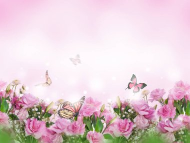 close up of pink roses and butterflies, floral background