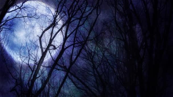 bezaubernde Herbstbäume gegen Vollmond in der Nacht, Video