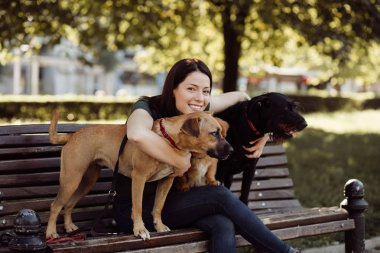 Dog walker sitting on bench and enjoying in park with dogs.