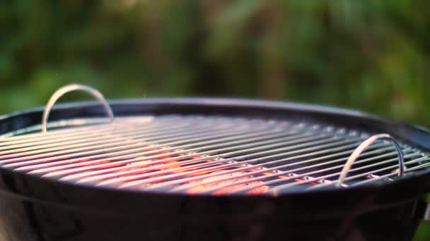 Barbecue in close-up (slow motion)