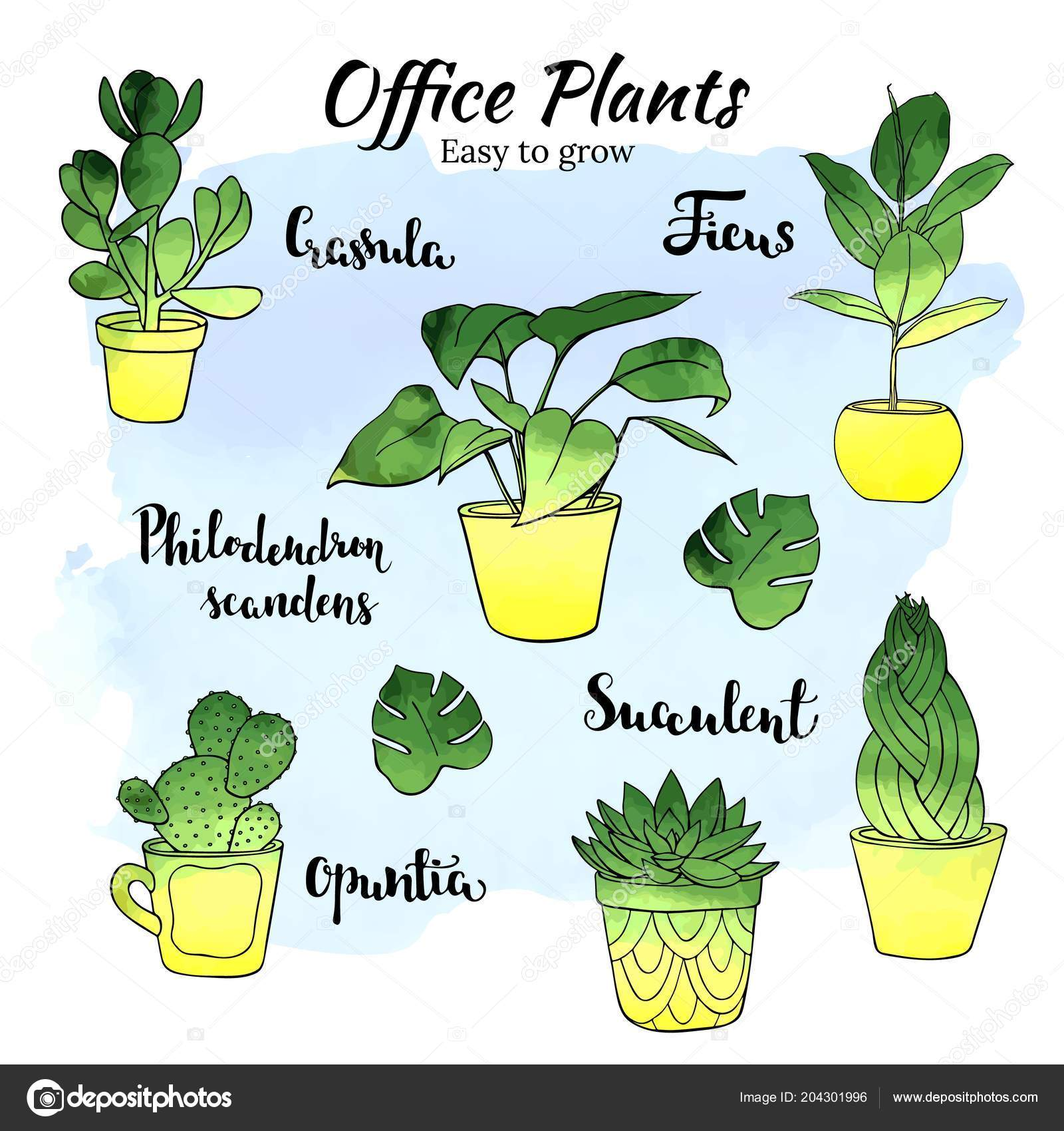 ᐈ House Plant Drawing Stock Vectors Royalty Free Indoor Plant Illustrations Download On Depositphotos