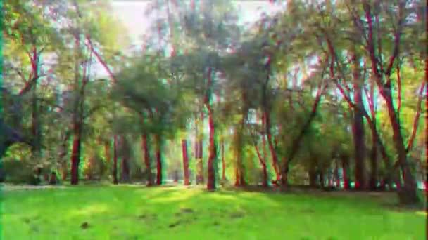 Škubnutí. Sluneční paprsky procházejí stromy. Pevná deformace. Čas propadá. 4k (UltraHD). Video. UltraHD (4k)