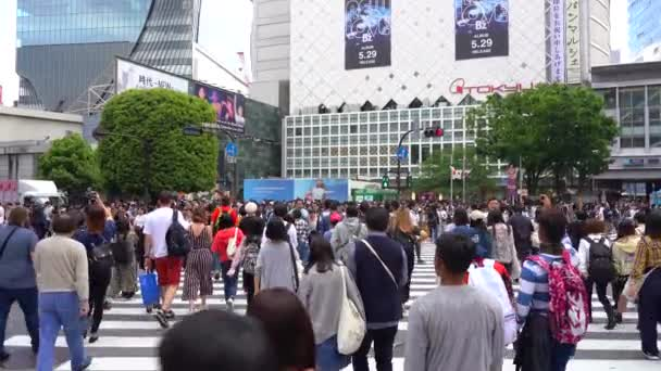 Walking in Shibuya Crossing on daytime ( 4K UHD ). Shibuya Crossing is one of the busiest crosswalks in the world. View of pedestrians crosswalk at Shibuya district normal speed. Tokyo, Japan - May 4, 2019