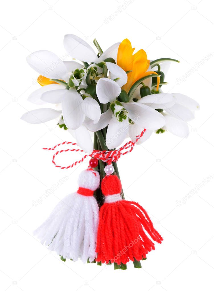 Bouquet of snowdrops and crocus, red and white traditional bulgarian martenitsa