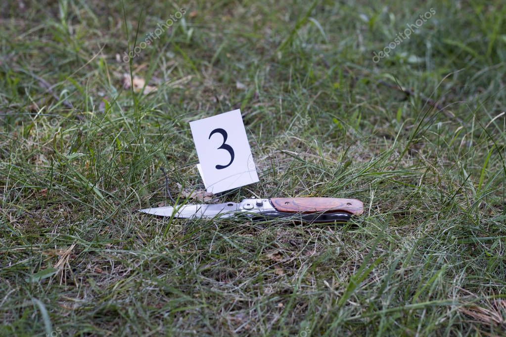 knife on the grass, investigation, murder