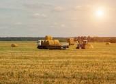 Farmář traktorem vyskladnění sena a načte balík sena do přívěsu, zemědělství