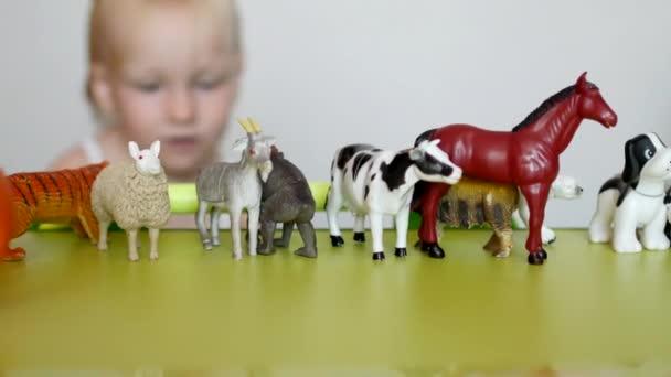 Ein kleines Kind spielt Tierleben mit Lernspielzeug, entwickelt Logik und Motilität, die Fähigkeit zu unterscheiden, Tiere, Einarbeitung, weißer Hintergrund, Nahaufnahme, Spielzeug
