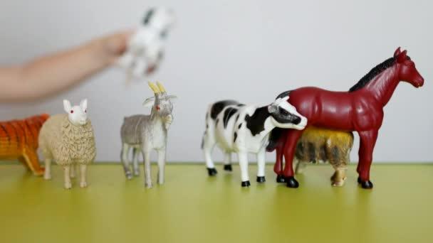 Ein kleines Kind spielt Tierleben mit Lernspielzeug, entwickelt Logik und Motilität, die Fähigkeit zu unterscheiden, Tiere, Einarbeitung, weißer Hintergrund, Nahaufnahme