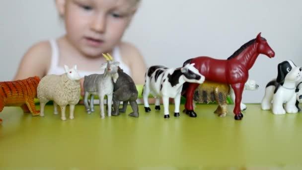 Egy kis gyerek játszik az állati élet, a tanulás játékok, fejleszti a logika és a motilitás, képes különbséget tenni az állatok, a megszokás, a fehér háttér, a közeli