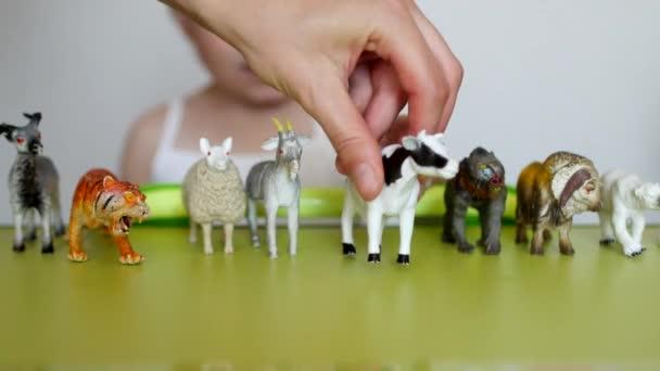 Rodiče učí malé děti rozlišovat mezi zvířaty, childs play s hračky a rodiče, close-up, Kavkazský