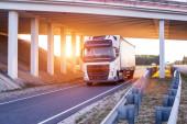 Mezinárodní řidič veze zboží na voze pod mostem. Nákladní automobil pracovní koncepce, pracovní režim a režim odpočinku, volná místa, zázemí