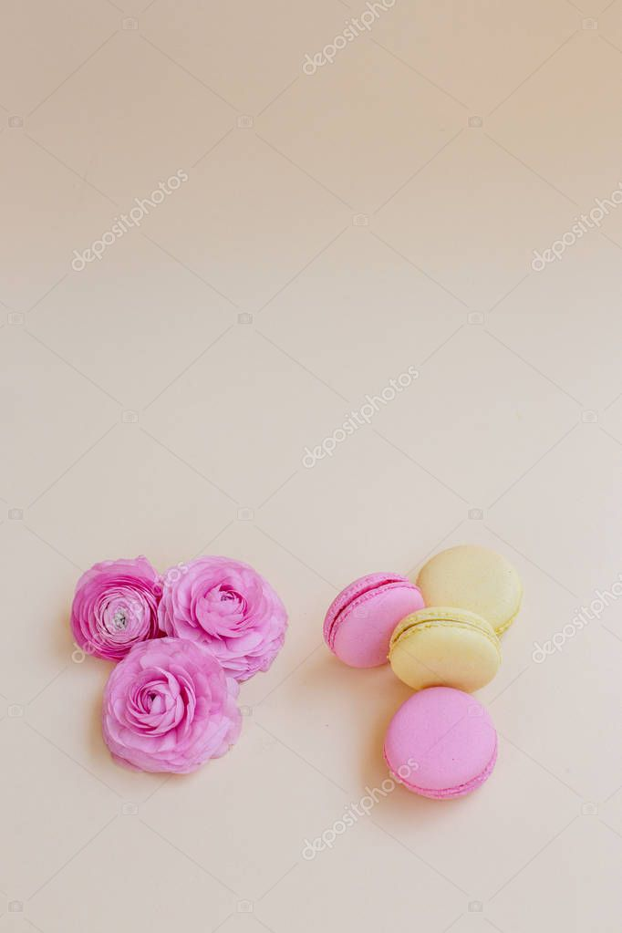 Macaroons and ranunculus on a yellow background.