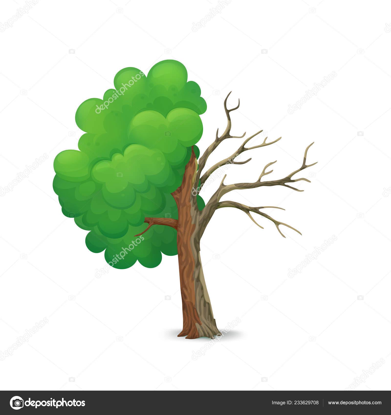 árbol Dibujos Animados Partirse Por Mitad Aislado Sobre Fondo Blanco
