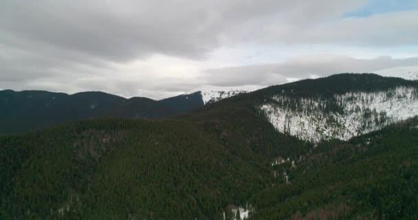 Letecký pohled na les v horách. Zelené stromy. Sníh. Zima. Šedá obloha. Bukovel. Ukrajina.