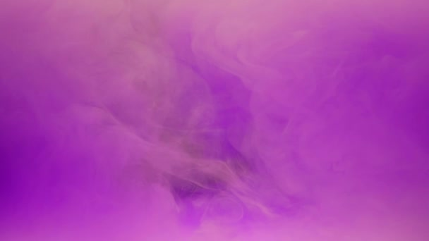 Colorful violet ink mixing in water, swirling softly underwater on black background with copy space. Colored acrylic cloud of paint isolated. Abstract smoke explosion animation. Slow motion.