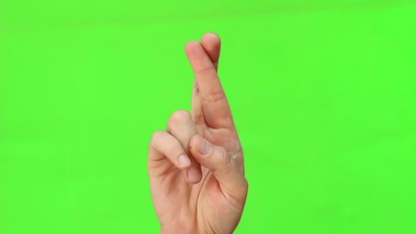 Přes prsty je gesto rukou běžně používá k přát štěstí. Gesto ruky. Izolovaný. Chromakey greenscreen