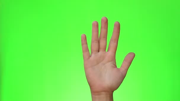 Ruku nahoru. Lidé zvyšovat ruku na otázku odpovědět. Rukou gesto. Chromakey. Zelená obrazovka. Izolovaný
