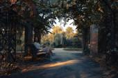 Nő romantikus öltözékben pihentető szabadtéri őszi parkban, és élvezi a jó Időjárás megtekintéséhez a tó és a naplemente.