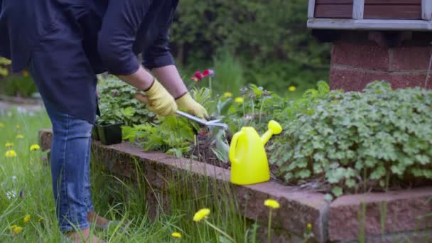 Caucasian female gardener pulling weeds from the beds with gardening tool.