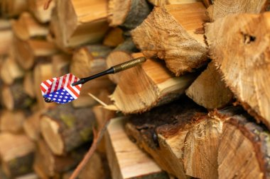American flag at tail of dart stuck in firewood. United States of America symbol