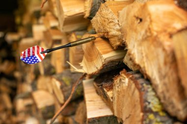 Globalism concept. American flag at tail of dart stuck in firewood.