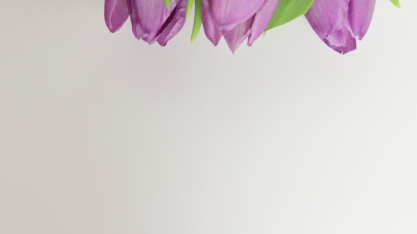 Bouquet of spring flowers, pink tulips on white background close up - 8 march, Valentine day or mothers day holiday concept