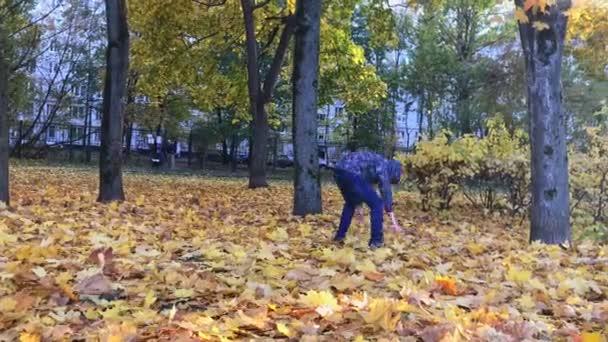 Nedospělý chlapec házel na podzim listy v parku