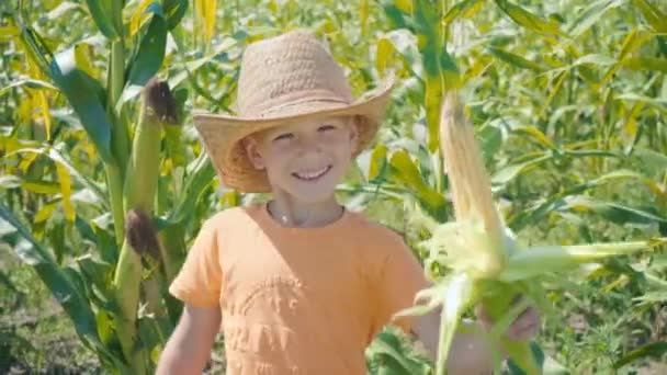 Portrait of a boy in a straw hat and an orange T-shirt in a cornfield, a child holding a corn in his hand