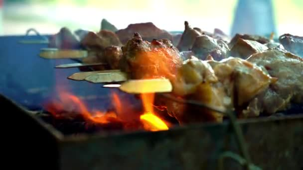 Maso na grilu. Vaření šíš kebab na jehle. Vaření vepřové maso na žhavého uhlí. Detailní záběr na tradiční piknik jídlo. Grilování masa