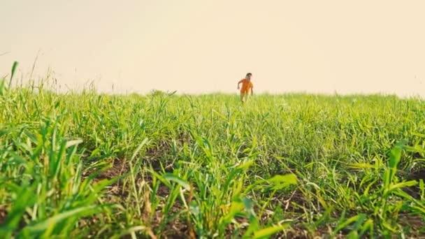 Dítě pracuje a porazí míč pohybující se do kamery, mladý fotbalista. 5 let starý chlapec kope fotbalový míč s nohama na vysoké zelené trávě v poli