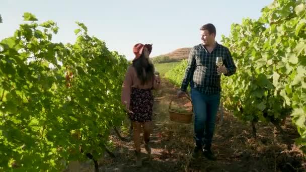 Krásný pár s sklenicemi vína v rukou a košem hroznů