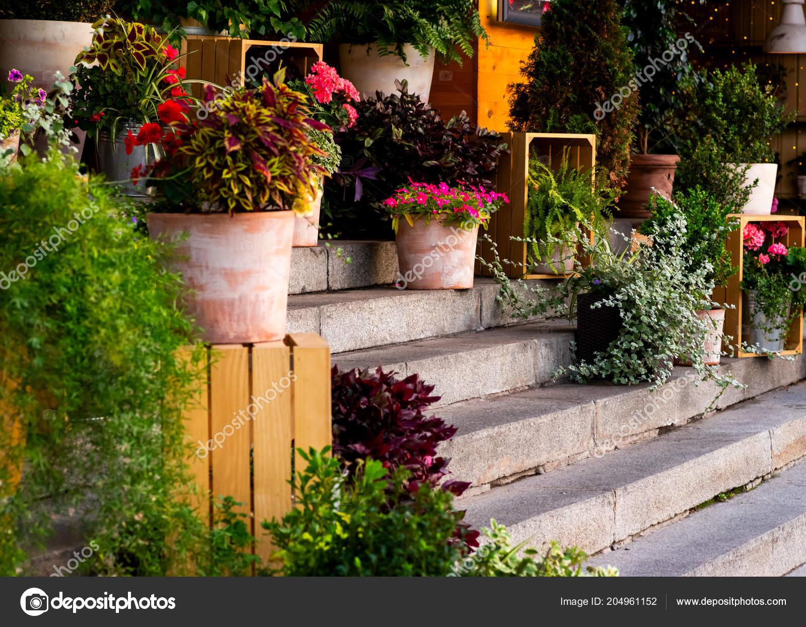 Decoratie van bloemen de ingang groep u2014 stockfoto © posonsky #204961152