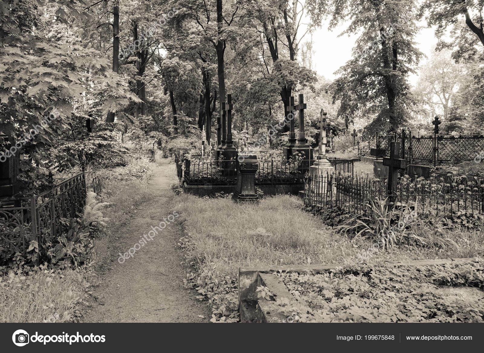 Un cimetière du XIXème siècle découvert dans un bois Depositphotos_199675848-stock-photo-pathway-abandoned-cemetery-graves-tombs