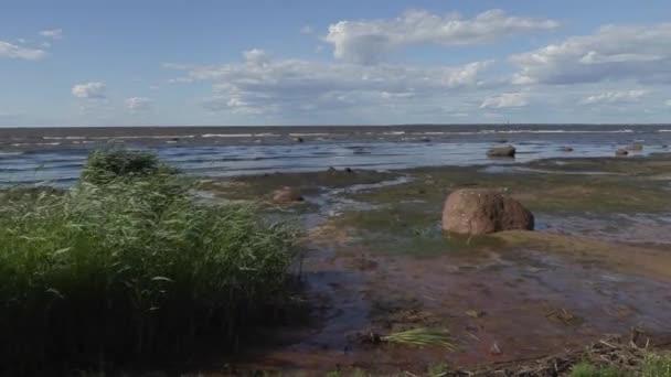 Spaziergang entlang der Ostseeküste an einem sonnigen Sommertag mit starkem Wind