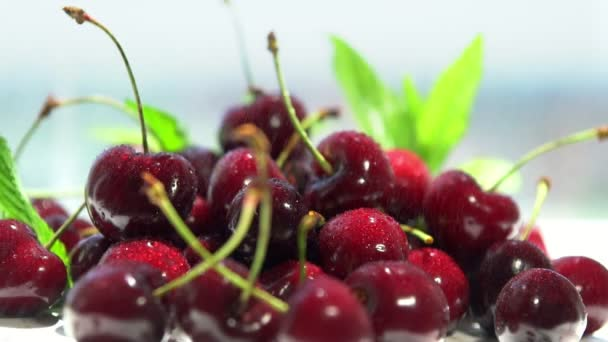 Container of fresh ripe red farm cherries