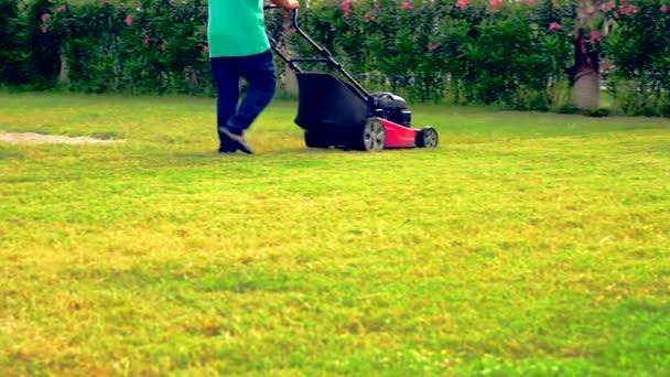 Osoba, chůze po sekání trávy