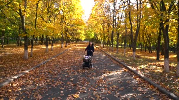Mladá šťastná matka chůzi s baby kočárek